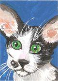 Acryliccat1a